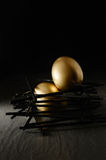 Яйц из гнезда пенсии Стоковое фото RF