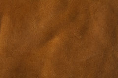 яловка буйвола кожаная Стоковое Изображение RF