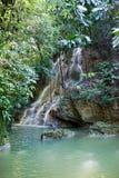 Ямайка. waterfalls.tropical ландшафт стоковые фотографии rf