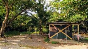 Ямайская бакалея стоковые изображения