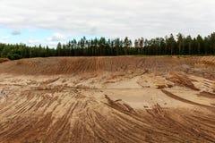 Яма песка в сосновом лесе Стоковая Фотография