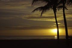 Январь в Флориде Стоковое Изображение RF