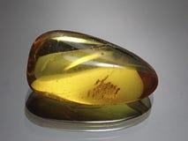 Янтарное желтое просвечивающее Стоковое Изображение RF