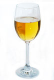 янтарное стекло пива высокое Стоковые Изображения RF
