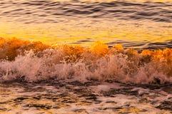 Янтарные волны Стоковые Фото