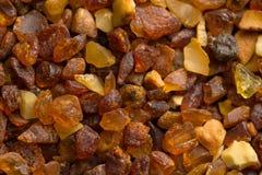 Янтарные камни от пляжа Балтийского моря Стоковые Фотографии RF