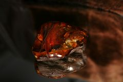 янтарный штраф Стоковые Фото