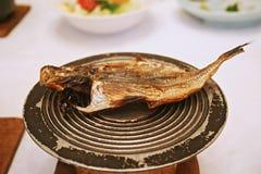 японец зажженный рыбами стоковые изображения rf