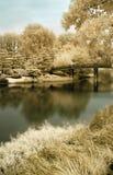 японец сада моста к Стоковые Изображения