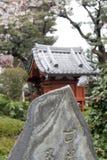 японец сада цветения Стоковые Изображения RF