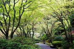 японец сада Стоковое Изображение RF