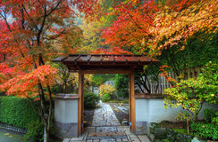 японец сада entryway Стоковые Изображения RF