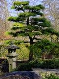 японец сада детали Стоковое фото RF