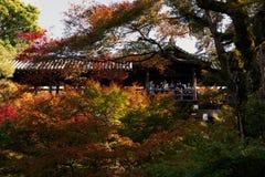 японец kyoto сада Стоковые Фотографии RF