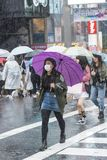 Японская девушка с фиолетовым токио зонтика Стоковое фото RF