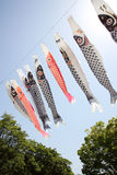 Японская лента змея карпа Стоковые Изображения RF
