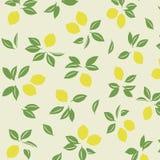 Японская картина лимона весны Стоковые Изображения