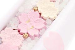 Японская кондитерская, сладкое wasanbon стоковое изображение rf