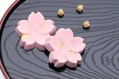 Японская кондитерская, сладкое wasanbon стоковое фото rf