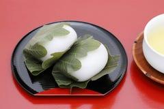 Японская кондитерская, Kashiwa Mochi сладкое стоковое изображение