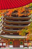 Японская осень перемещение Нагои, Японии Стоковые Изображения RF