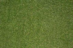 Японская предпосылка зеленой травы Стоковая Фотография RF