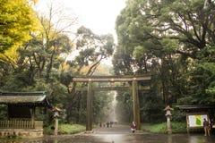 Японские девушки идя в токио с красивым желтым гинкго Стоковое Фото