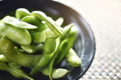 Японские зеленые сои на черном шаре Стоковые Изображения RF