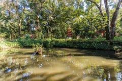 Японские сады на зоопарке Fabio Barreto города Ribeirão Preto Sao Стоковая Фотография RF