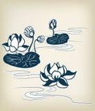 Японские традиционные элементы дизайна лилии воды иллюстрации вектора иллюстрация вектора