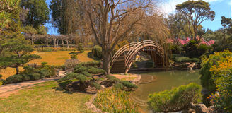 Японский ботанический сад на саде Huntington ботаническом Стоковая Фотография RF