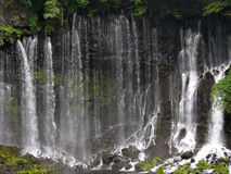 японский водопад shiraito Стоковое фото RF