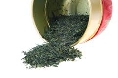 Японский зеленый чай с caddy Стоковые Изображения RF