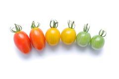 Японский изолированный томат вишни градиента Стоковое Изображение
