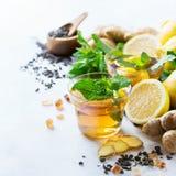 Японский китайский чай с мятой имбиря лимона Стоковые Фотографии RF