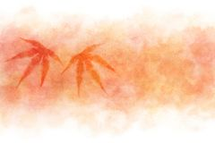 Японский конспект кленового листа осени на красной предпосылке краски акварели Стоковая Фотография RF