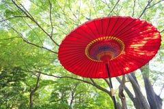 Японский красный бумажный зонтик Стоковые Фото