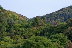 японский наземный ориентир Стоковые Фотографии RF