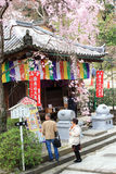 Японский народ молящ и посещающ древний храм, сезон 'Hasedera' весной стоковое фото
