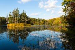 Японский национальный парк Shiretoko Стоковое Изображение RF