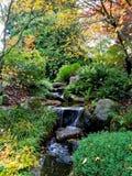 Японский парк сада воды Стоковая Фотография