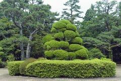 Японский парк стоковое изображение rf