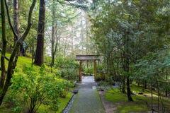 Японский путь сада к ворот Стоковая Фотография RF