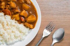 Японский рис карри, карри свинины, домашняя кухня Стоковое Фото