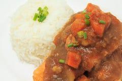 Японский рис кухни с глубоким соусом жареной курицы и карри с картошками и морковами Стоковое фото RF