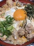 Японский рис с цыпленком Стоковые Фото