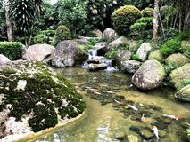 Японский сад в ландшафте лета Стоковая Фотография RF