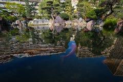 Японский сад в Монте-Карло Стоковые Фото