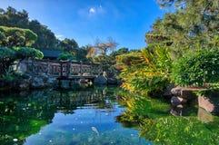 Японский сад с рыбой Стоковое Изображение