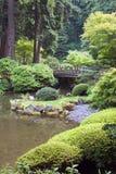 Японский сад стоковые изображения
